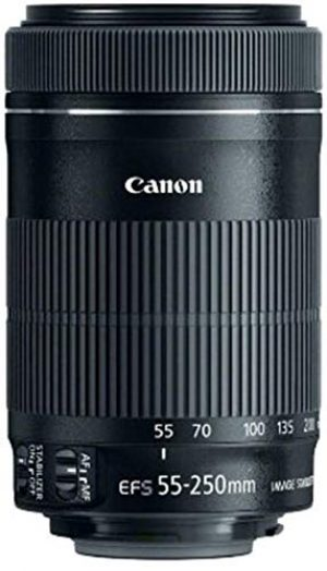 canon ef s 55 250mm f4 56 is stm 300x524 - Canon EF-S 55-250mm f4-5.6 IS STM Objektiv